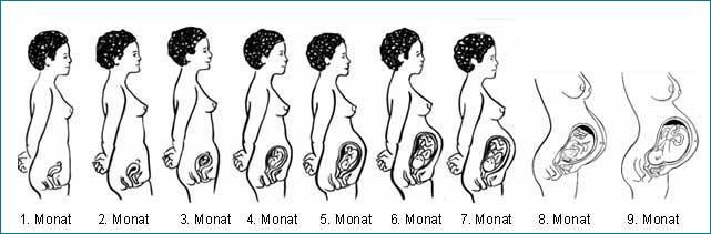 schwangerschaft nach geburt sexualitaet verhuetung lustverlust